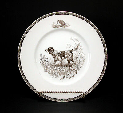 Wedgwood American Sporting Dog Plate ~ English Setter