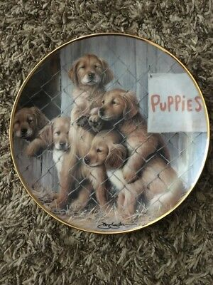ASPCA Adopt A Puppy Limited Edition Plate The Franklin Mint