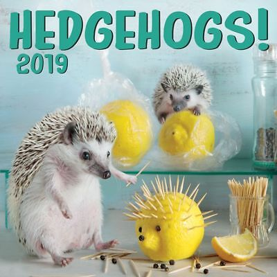 2019 Hedgehogs Wall Calendar, Small Pets by Zebra Publishing