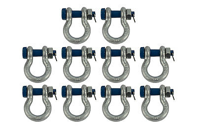 """10 Lot 1/2"""" 2 TON D Ring Shackle Screw Pin Clevis Safety Bolt G2130 Style"""