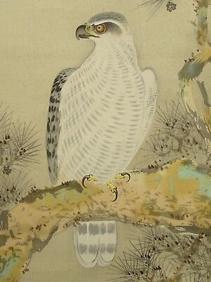 ME-017 Japanese Hanging Scroll Kakejiku Taka Hawk Vintage Antique