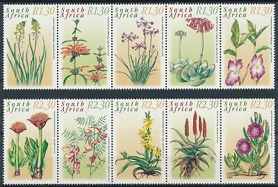 [H15731] South Africa 2000 MEDICINAL PLANTS Good set of stamps very fine MNH