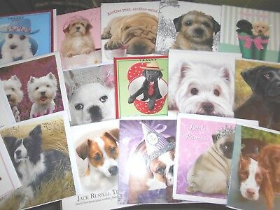 24 * Dogs * assorted ~ Birthday/Blank greeting cards ~ free postage