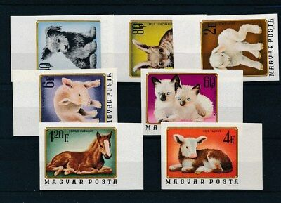[109425] Hungary 1974 Domestics animals good Set very fine MNH Imperf. Stamps