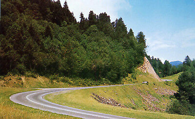 U.S. 441 Highway Gatlinburg Tennessee Postcard Great Smoky Mountains