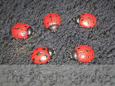 5 lady bugs beetles plaster resin cement craft latex moulds molds