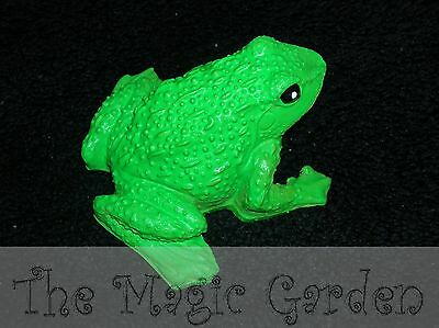 Frog plaster cement craft latex moulds molds