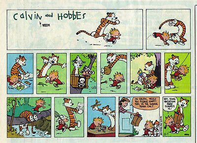 Calvin and Hobbes by Bill Watterson - color Sunday comic page - August 7, 1994