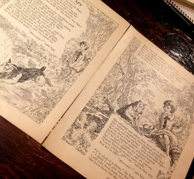 Vintage Magazine Pages of an Airedale Poem
