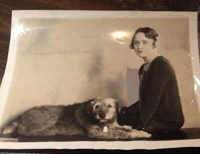 Vintage Large Photograph of an Airedale Terrier - 1929