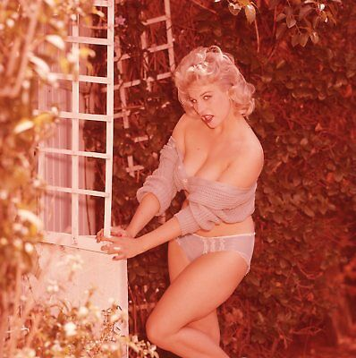 1960s Ron Vogel Transparency, voluptuous blonde pin-up girl, cheesecake, t223810