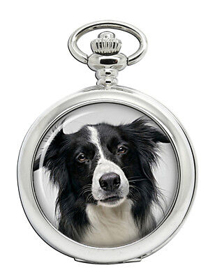 The Cheapest Price Montre Sport Agility Avec Cadran Border Collie Watches, Parts & Accessories Jewelry & Watches