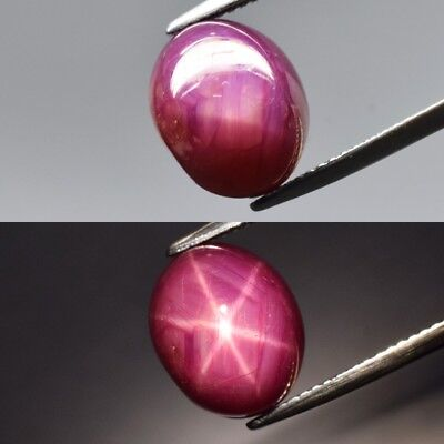 10.92ct 12x10mm Oval Cabochon Natural Red Two Side 6 Ray Star Ruby, Madagascar