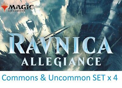 RAVNICA ALLEGIANCE Magic the Gathering UNCOMMON SET x 4 + COMMON (500 Random)