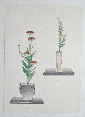 POPPY & DAISY : Japanese WOODBLOCK PRINT Art Ikebana Flower Arrangement