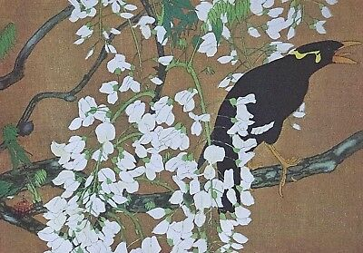 MYNAH BIRD & WISTERIA, RAKUSAN - Old Art Print of a Japanese Woodblock / Woodcut