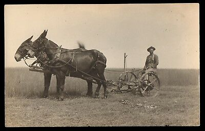 c1909 Real Photo Postcard RPPC of COFFEYBURG MO Mules & Farmer on DEERE? PLOW