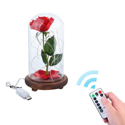 Beauty And The Beast Enchanted Rose Glass Dome LED Lighted Wedding Decor Gift US