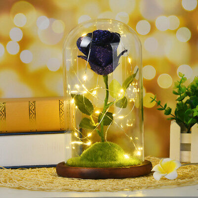 Blue Rose Beauty And The Beast Enchanted Flower Glass Dome Valentine's Day Gift
