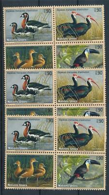 [109764] United Nations 2003 Fauna 3x good Set very fine MNH Stamps