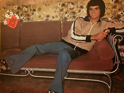 Donny Osmond, Osmonds Brothers, Valerie Bertinelli, Full Page Vintage Pinup