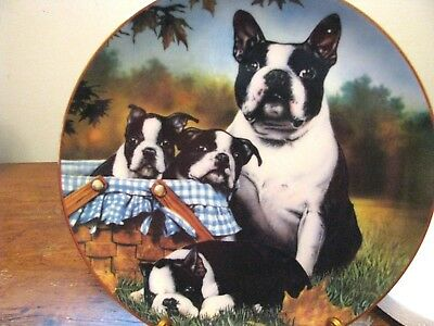 "DANBURY MINT BOSTON TERRIER PLATE ""FAMILY FUN"" By Dan Hatala"