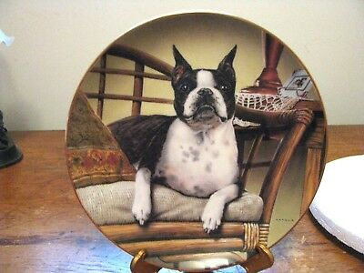 "DANBURY MINT BOSTON TERRIER PLATE ""NAP TIME"" By Dan Hatala"