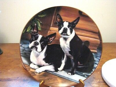 "DANBURY MINT BOSTON TERRIER PLATE ""WIDE-EYED DUO"" By Dan Hatala"