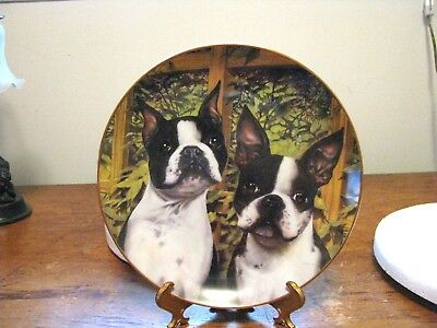 "DANBURY MINT BOSTON TERRIER PLATE ""BOSTON BUDDIES"" By Dan Hatala"