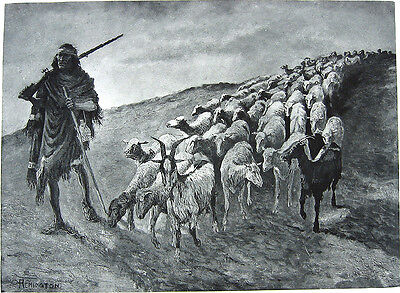 NAVAJO INDIAN & SHEEP HERD FLOCK ~ Old 1888 Frederic Remington Western Art Print