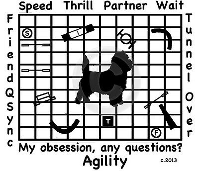 Cairn Terrier Dog Agility My Obsession, Any Questions? T-shirt Our Original