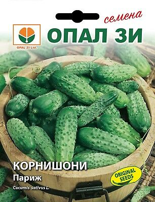GHERKIN PICKLING GHERKIN 50 HIGH QUALITY VEGETABLE SEEDS //128 IRA F1