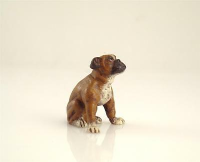 Franz Bergmann Vienna Sitting BOXER DOG Bronze Cold Painted Bergman Brass