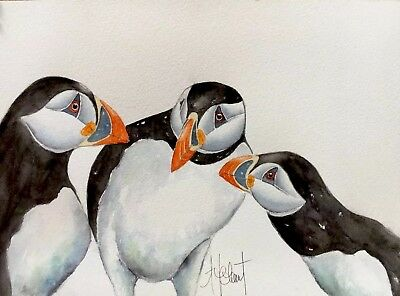 PUFFIN BIRD ZZ013 ANIMAL POSTER Photo Picture Poster Print Art A0 to A4