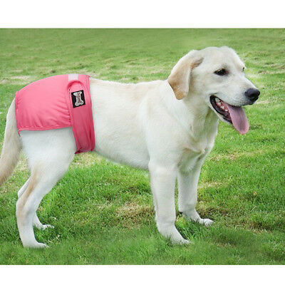Reuseable Female Pet Dog Pants Pads Bitch Menstrual Sanitary Nappy Diaper