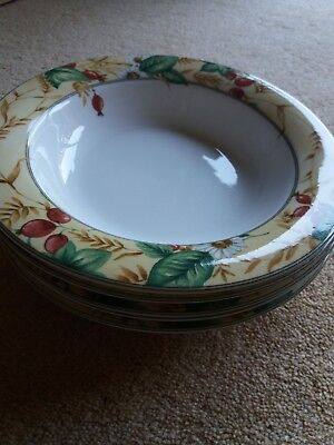 Royal Doulton Expressions Edenfield Rimmed Soup Bowls In Good Condition x 5