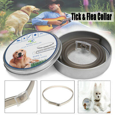 Tick & Flea Neck Collar Dog Cat Pet Anti Insect Mosquitoes 8 Months Adjustable