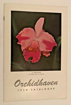 Orchidhaven 1950 Catalog, orchids, H Patterson, Bergenfield NJ, cattleya, hybrid