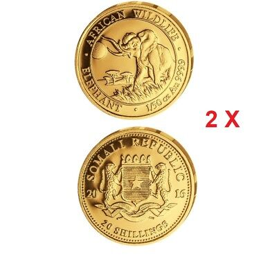 2016 Somalia 2/50th Oz Gold African Elephant BU PRIORITY Shipping 40 Shillings !