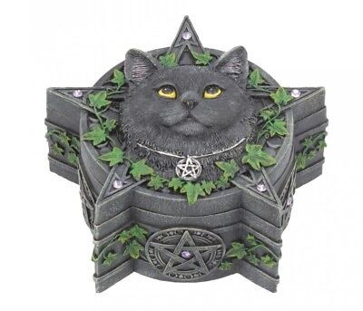 New Charmed One Lisa Parker Black Cat Trinket Jewellery Box Nemesis B4471
