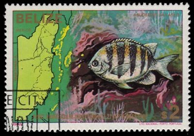 Stamps Belize 1979 Rowland Hill Olympics 1981 Ships 1982 Marine Life Fine Used Belize (1973-now)
