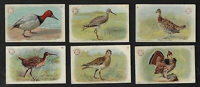 """7 Arm & Hammer Baking Soda Cards, Our New Cards """"Game Bird Series"""""""