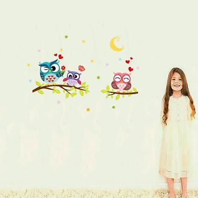 Colour Owl Birds Branch Wall Decal Removable Stickers Kids Nursery Art Mural  GG