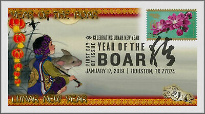 Chinese Lunar Year of the Pig - Boar 2019 First Day Cover #542