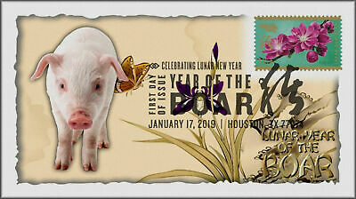 Chinese Lunar Year of the Pig - Boar 2019 First Day Cover #302