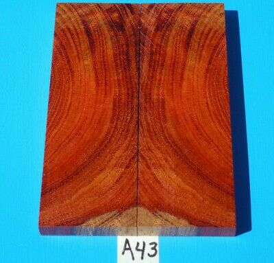 1 Pair Knife Scales Colorful Borneo Rosewood~Knife Blank Grips~Exotic Wood
