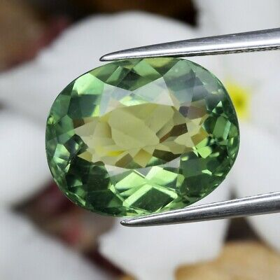 8.18ct 14x11.5mm Oval Natural Unheated Yellowish Green Apatite, Brazil