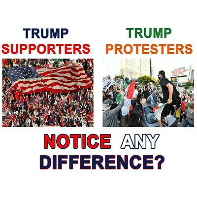 Anti Liberal Conservative TRUMP SUPPORTERS NOTICE  DIFFERENCE Political Shirt