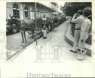 1978 Press Photo Tourists Admire Horse & Carriages, French Quarter, New Orleans