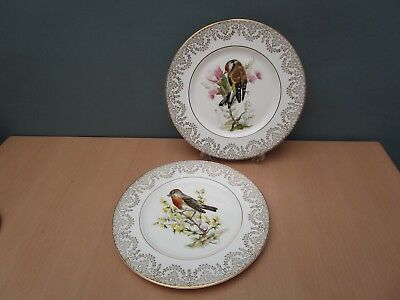 2 Bone China 10 1/2 Inch Dinner Plates With Garden Bird Designs